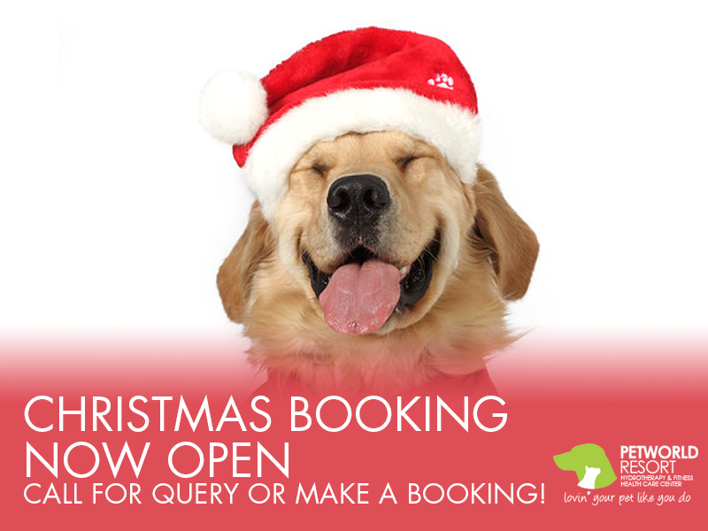 Christmas booking now open @2017 | Petworld Resort